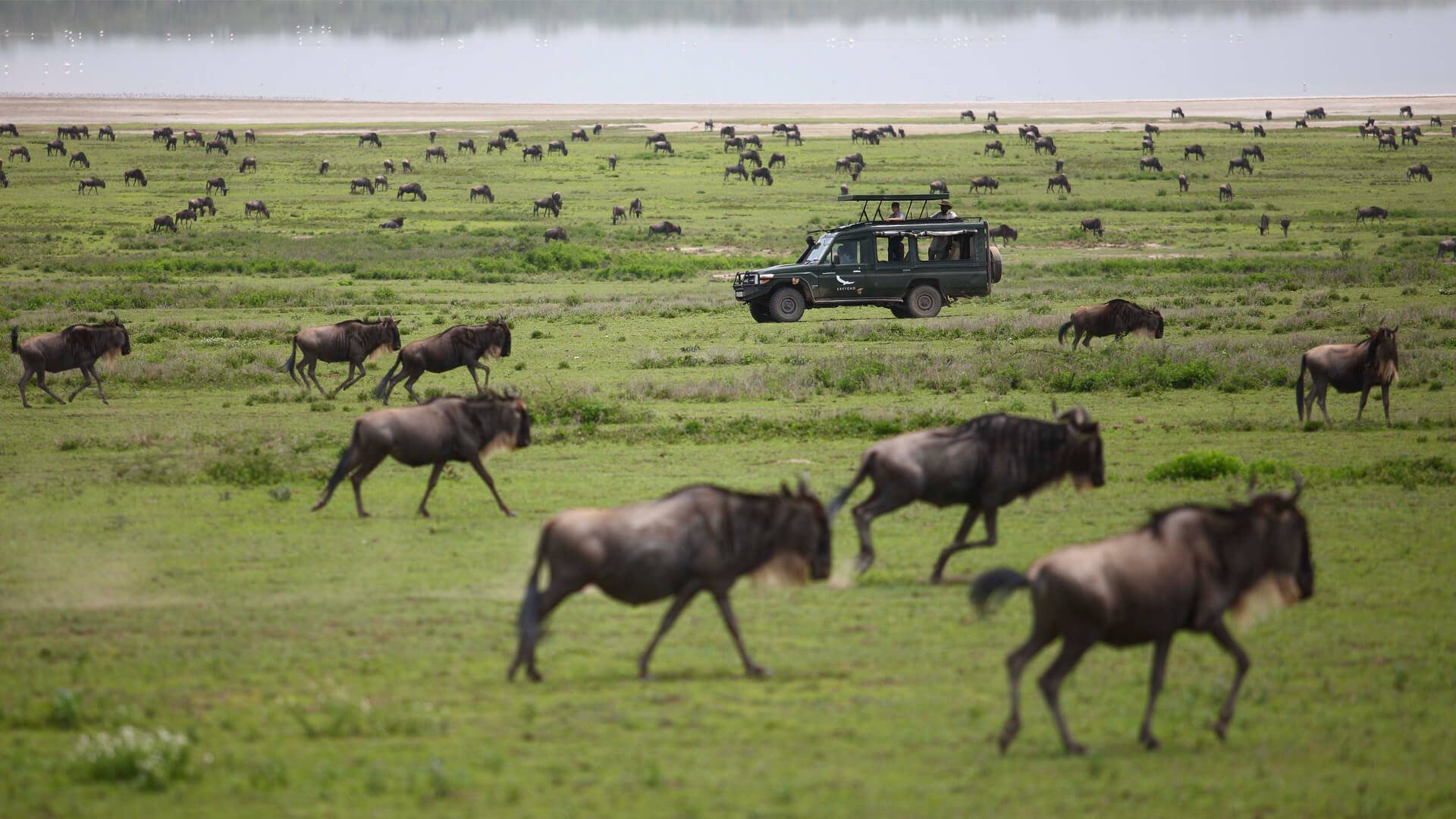 Masai Mara National Reserve | Luxury Kenya Safari | andBeyond